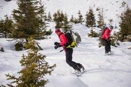 snowboard freeride argentiere