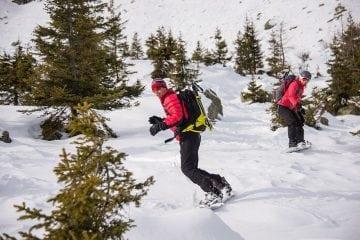 Introduzione snowboard freeride UCPA